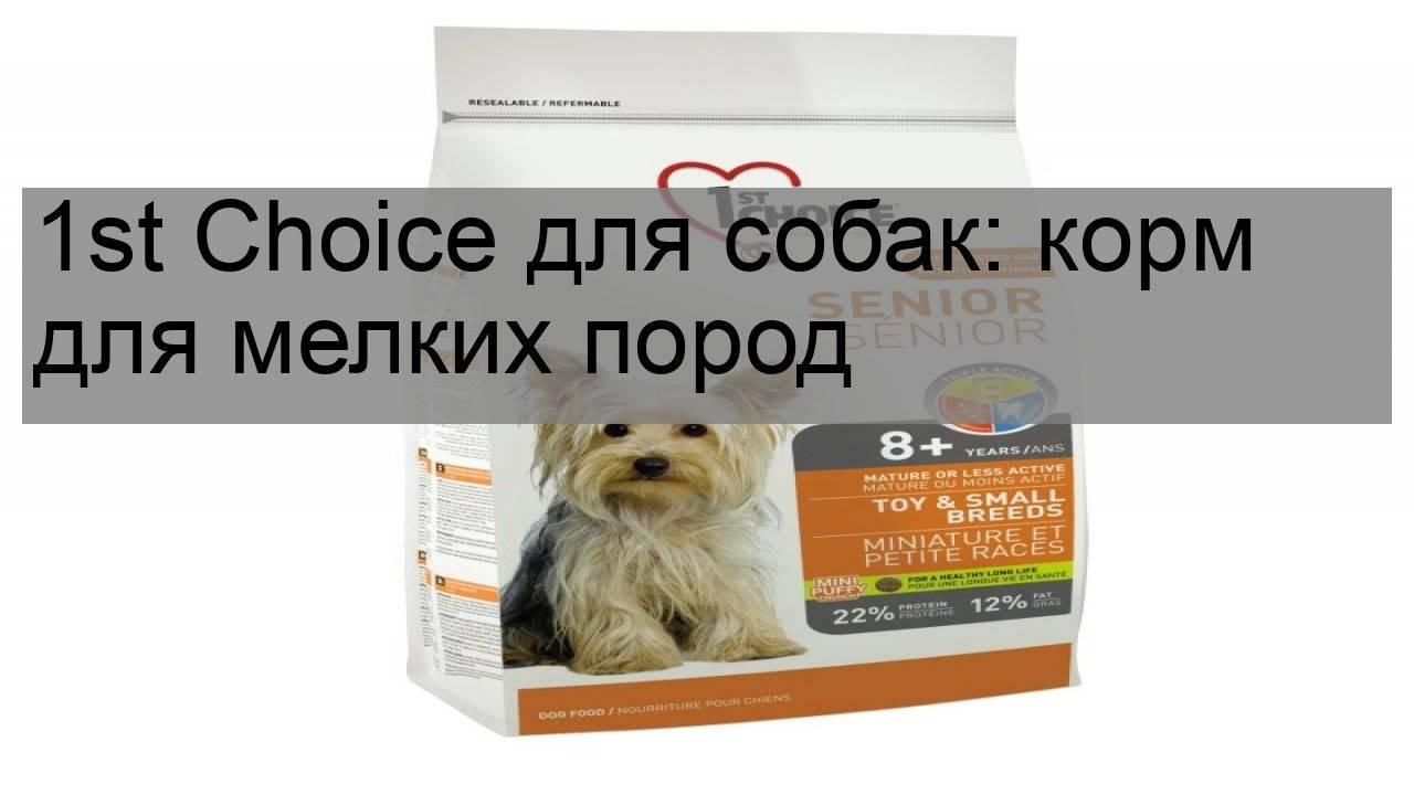 Корм для кошек 1st choice: отзывы и разбор состава - kotiko.ru