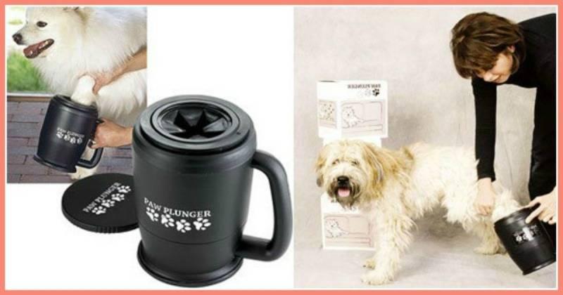 Лапомойка - первый помощник хозяину собаки