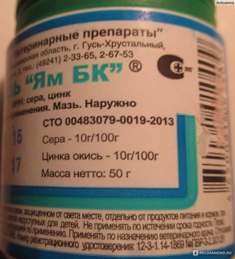 Саркоптоз и демодекоз (подкожный клещ)