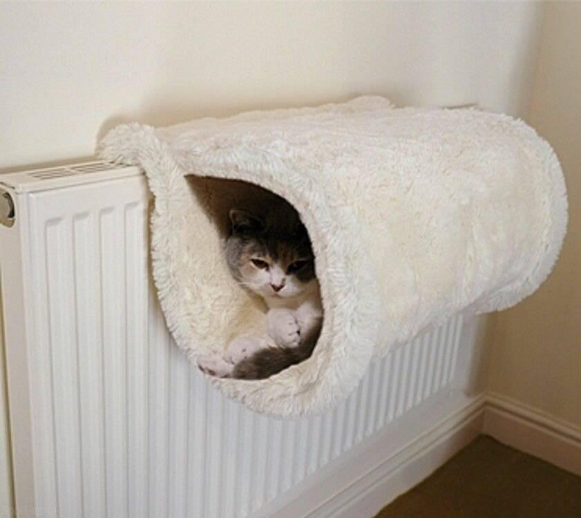 ᐉ как сделать лежанку для кошки? - ➡ motildazoo.ru