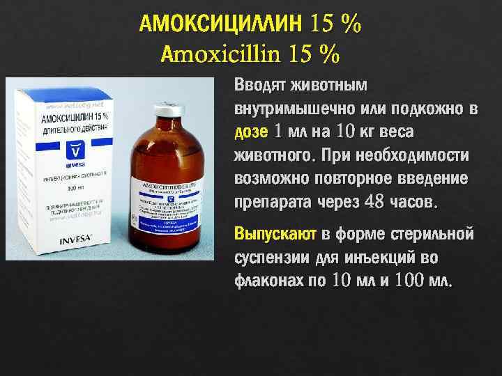 Инструкция по применению лекарственного препарата амоксициллин 150