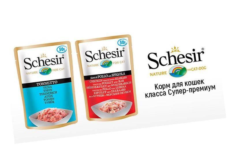 Schesir корм для кошек: сухой, влажный, паучи, отзывы ветеринаров
