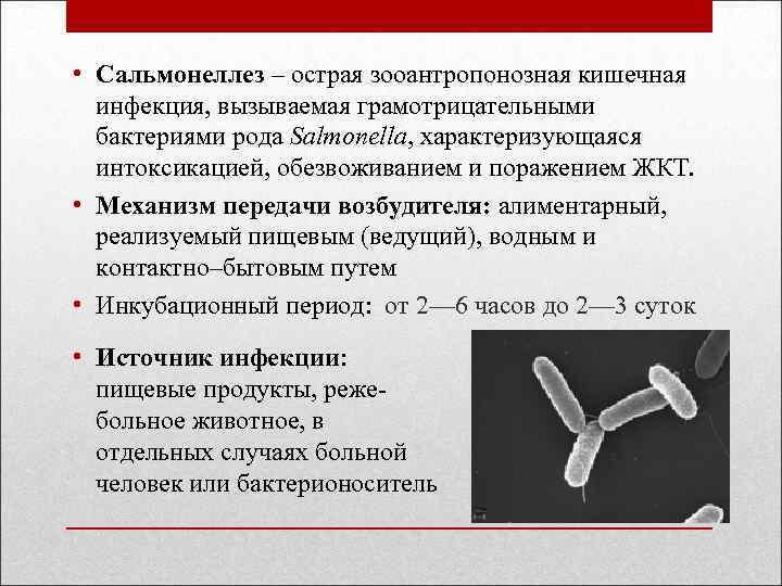 """""""четырехлапые"""" болезни"""