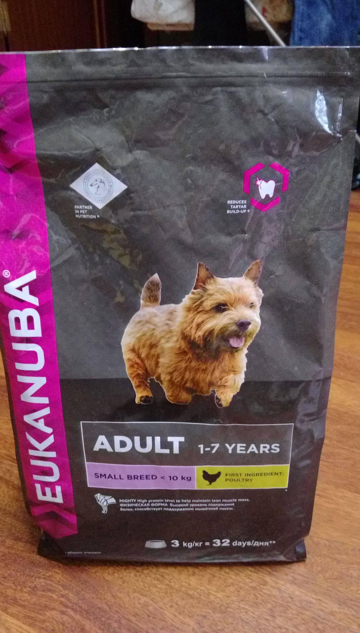 Eukanuba корм для собак: отзывы, где купить, состав