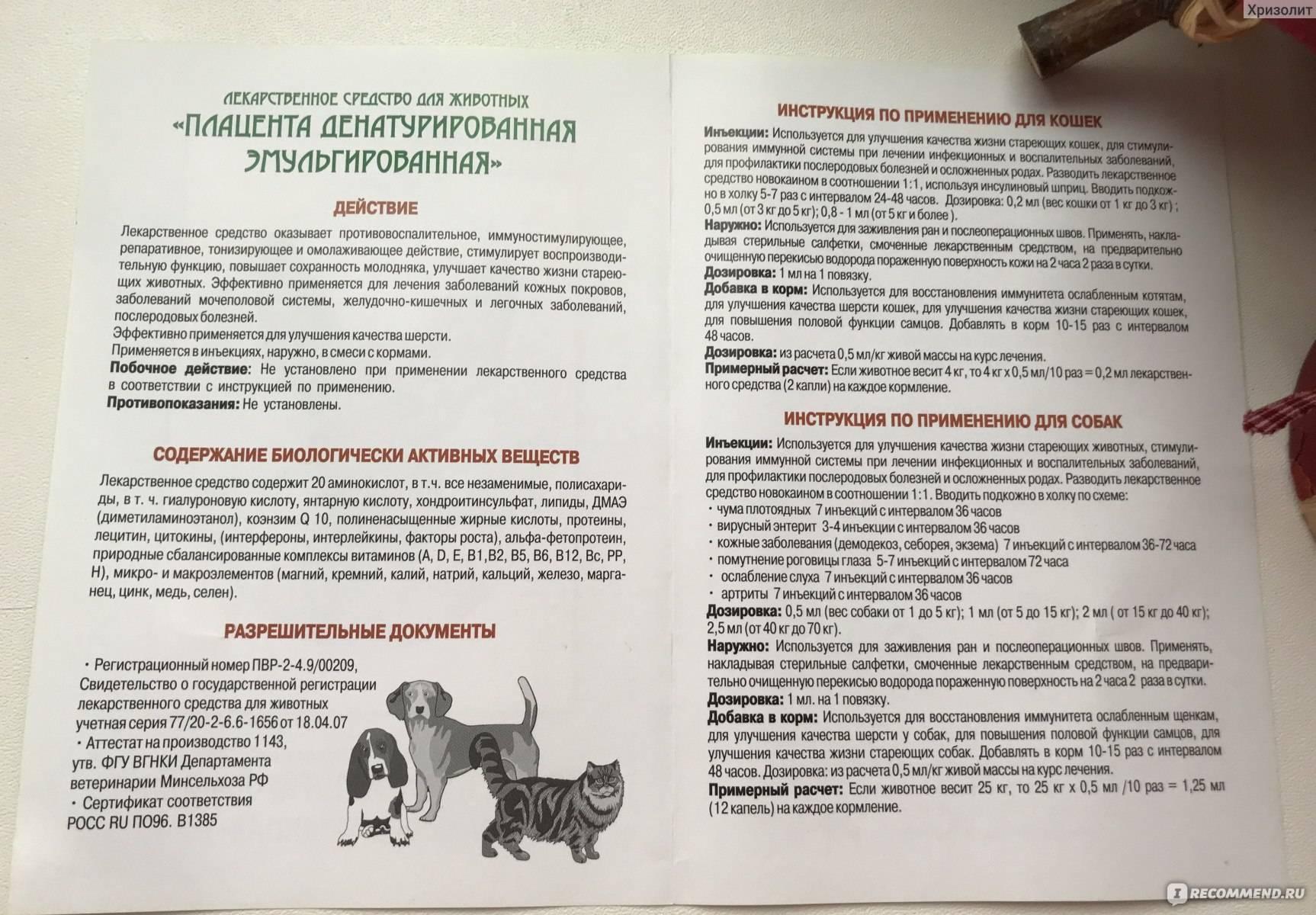 Ронколейкин для кошек: показания и инструкция по применению, отзывы, цена