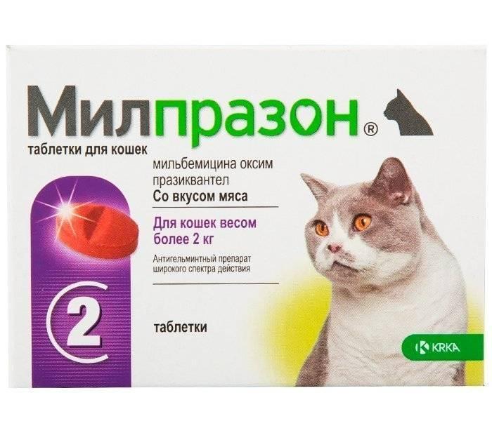 Милпразон, таблетки для собак, инструкция