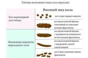 Расстройства и нарушения пищеварения у собак - симптомы и причины | хиллс