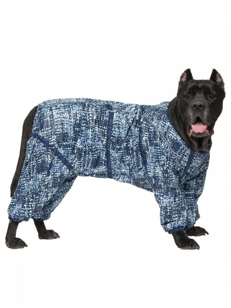 Большие гладкошерстные собаки: короткошерстные породы крупных размеров черного и белого, серого и других окрасов