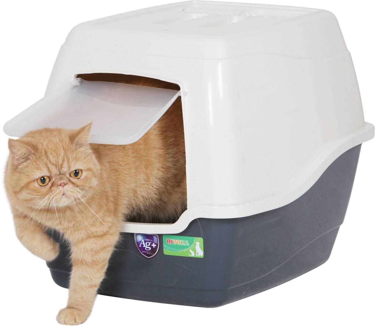 Лучшие наполнители для кошачьего туалета по отзывам. топ 20