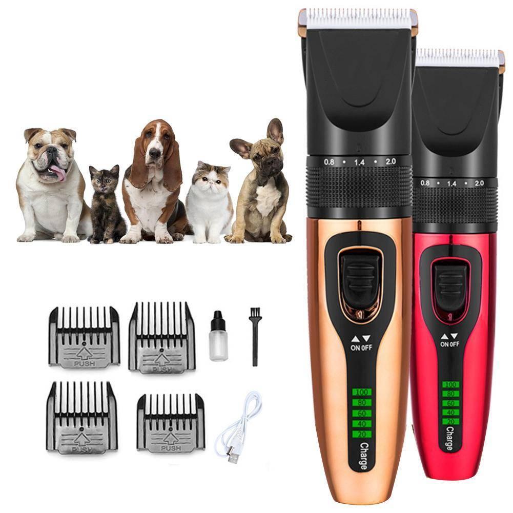 Машинки для стрижки собак (38 фото): какой триммер лучше? рейтинг профессиональных моделей. чем они отличаются от человеческих машинок? отзывы