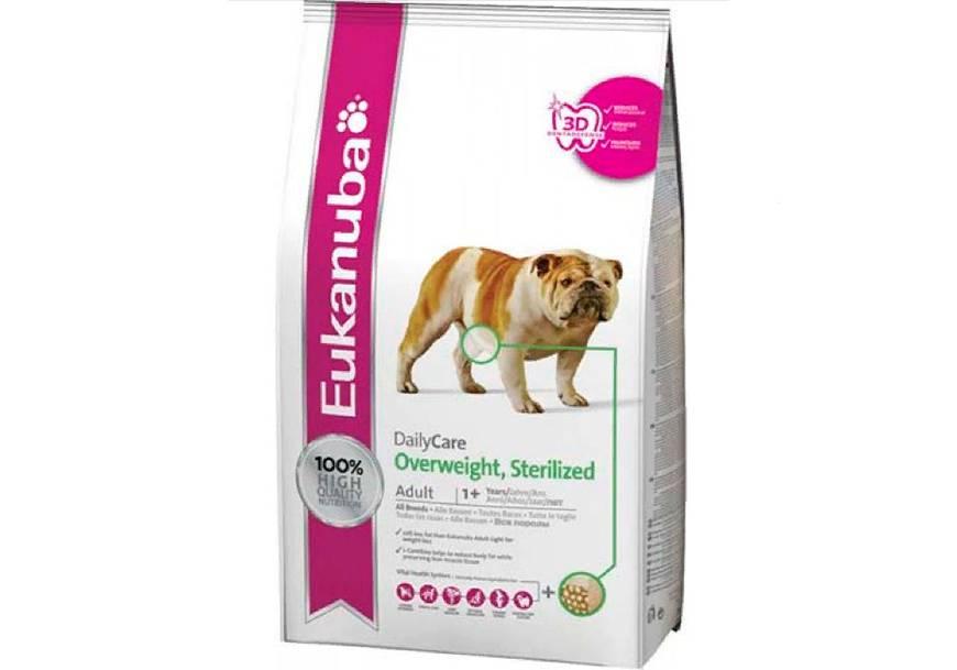 Кормление белых собак: аллергия на белки, есть ли сухой гипоаллергенный корм для собак белого окраса, уход за шерстью около глаз