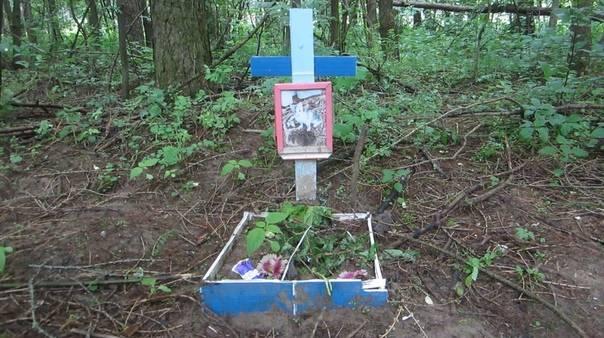 Как правильно похоронить кошку - ритуальный дом грааль