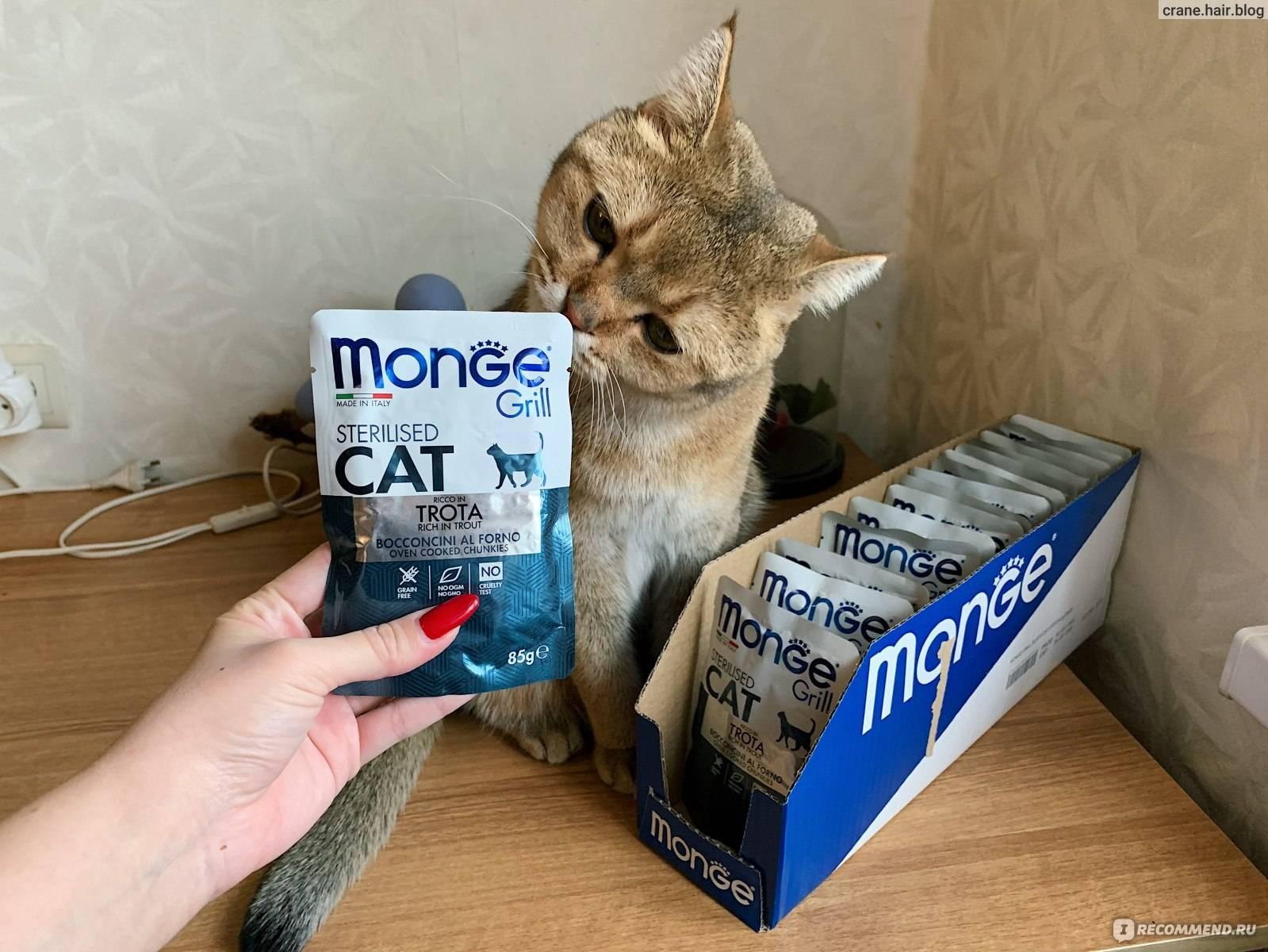 """Корм """"монж"""" для кошек"""