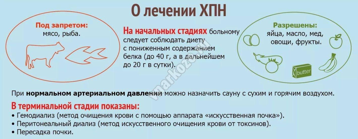 """Хроническая почечная недостаточность у кошек (хпн) - симптомы и лечение хпн у кошек в москве. ветеринарная клиника """"зоостатус"""""""