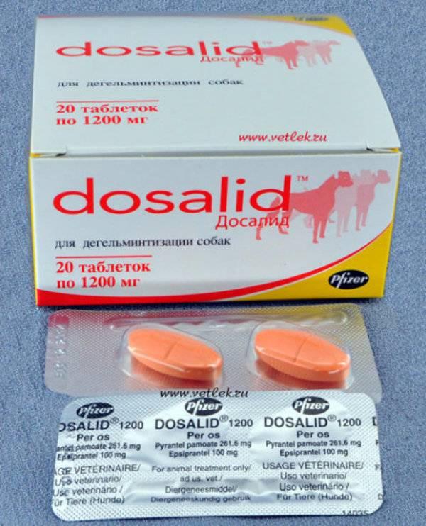 Препарат (лекарство) для собак - ultracell-dog: лечение заболеваний, укрепление иммунитета, регенерация