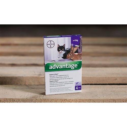 Адвантейдж для кошек более 4 кг, упак. 4 пипетки