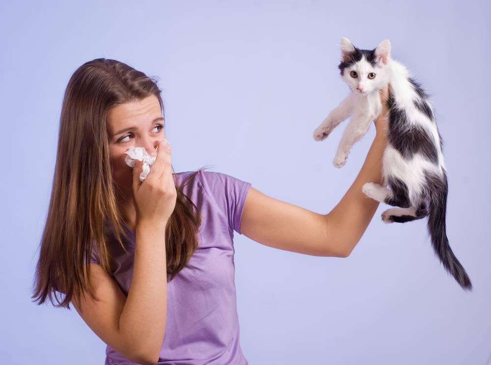Что отталкивает кошку от человека
