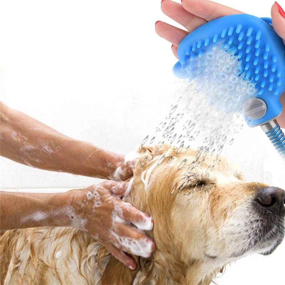 ᐉ уход за шерстью собаки: 6 типов шерсти – 6 подходов к уходу за собакой - ➡ motildazoo.ru