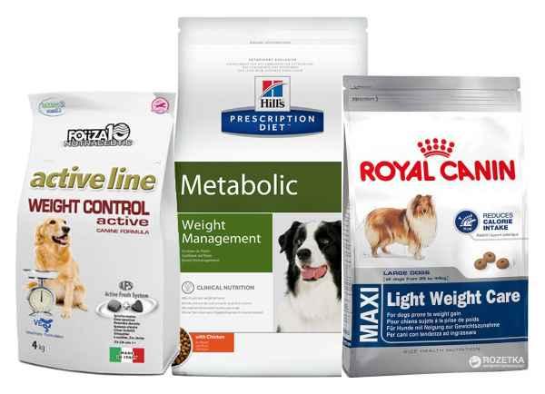 """Ожирение у собак, что делать, диета для собаки при ожирении   блог ветклиники """"беланта"""""""