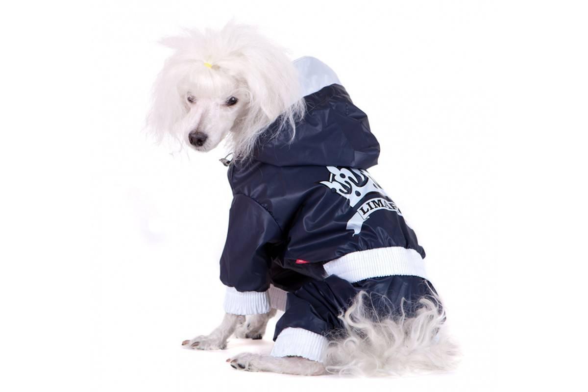 Плащи дождевики для собак
