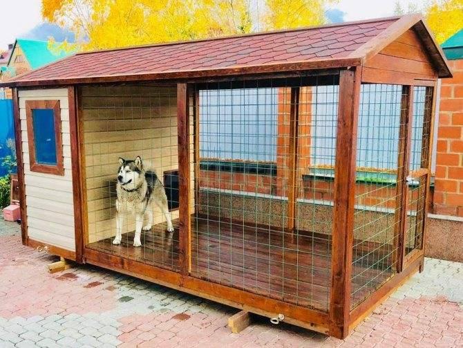 Вольеры для щенков в квартиру: рассказываем по полочкам