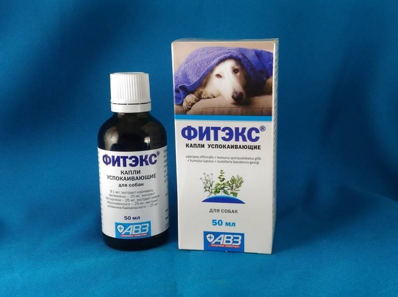 Фитэкс для собак: инструкция и показания к применению, отзывы, цена