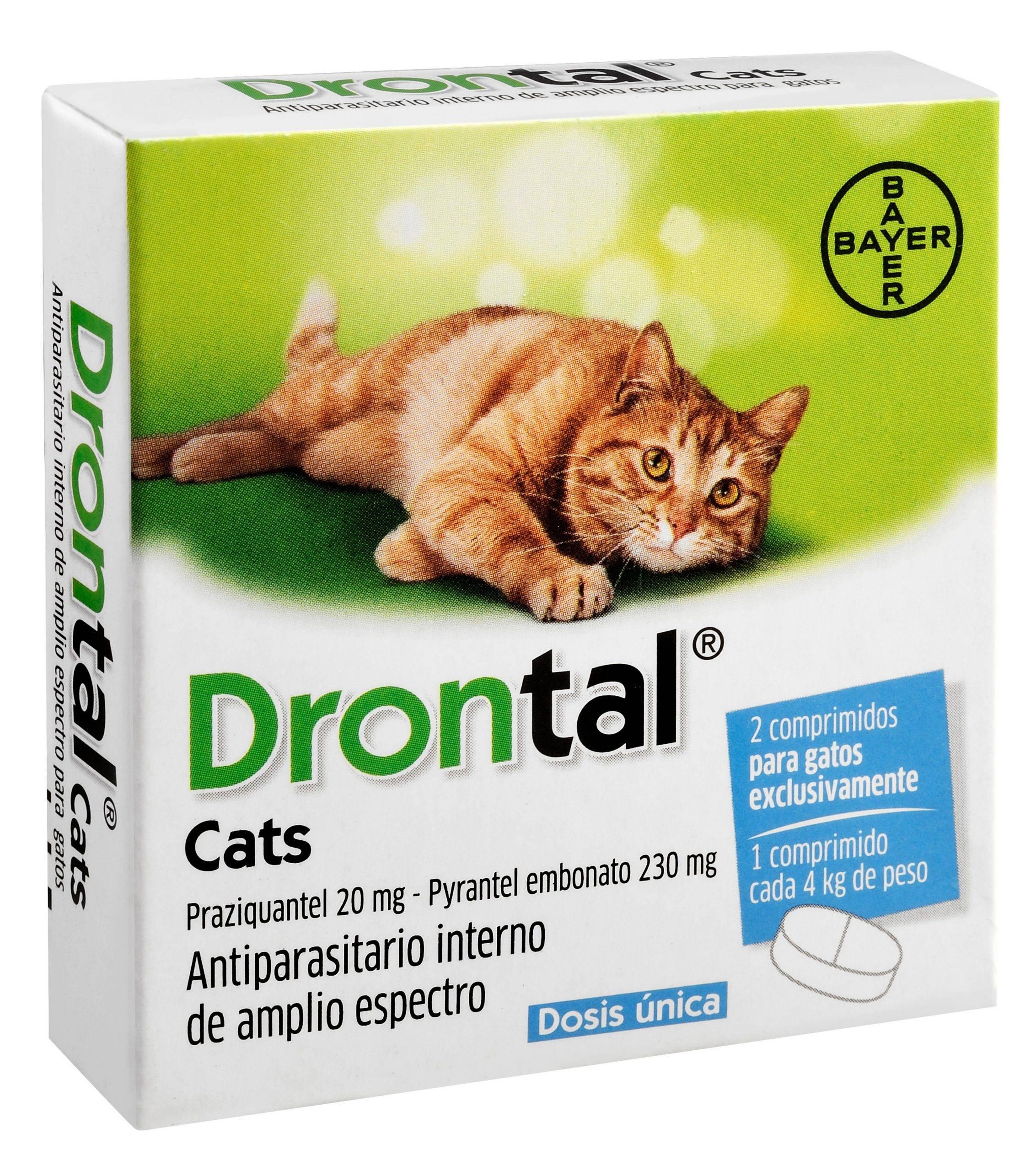 Особенности использования дронтал против глистов у кошек