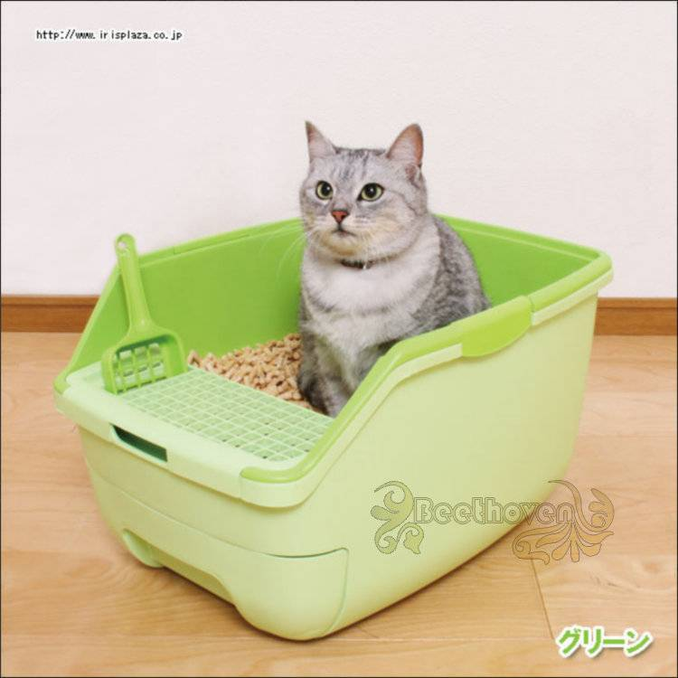 Кошачий наполнитель для туалета: обзор лучших производителей