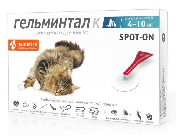 Препарат лигфол для кошек: панацея или рекламный ход