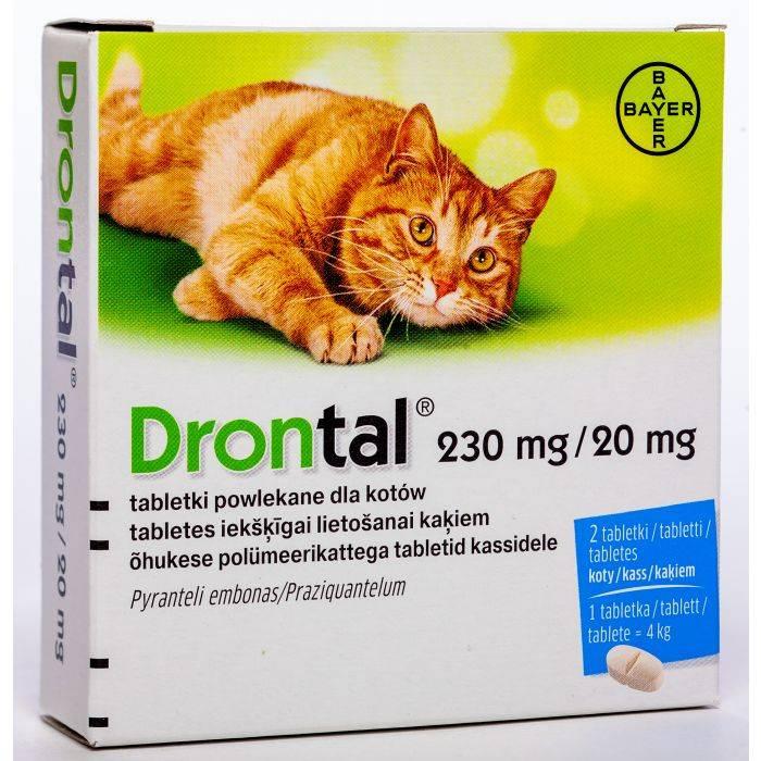 «дронтал» для кошек: инструкция по применению