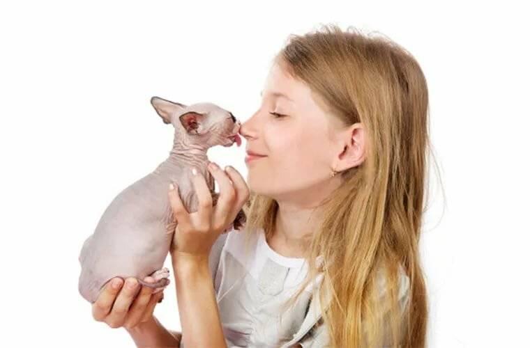 Какое животное завести ребенку-аллергику?