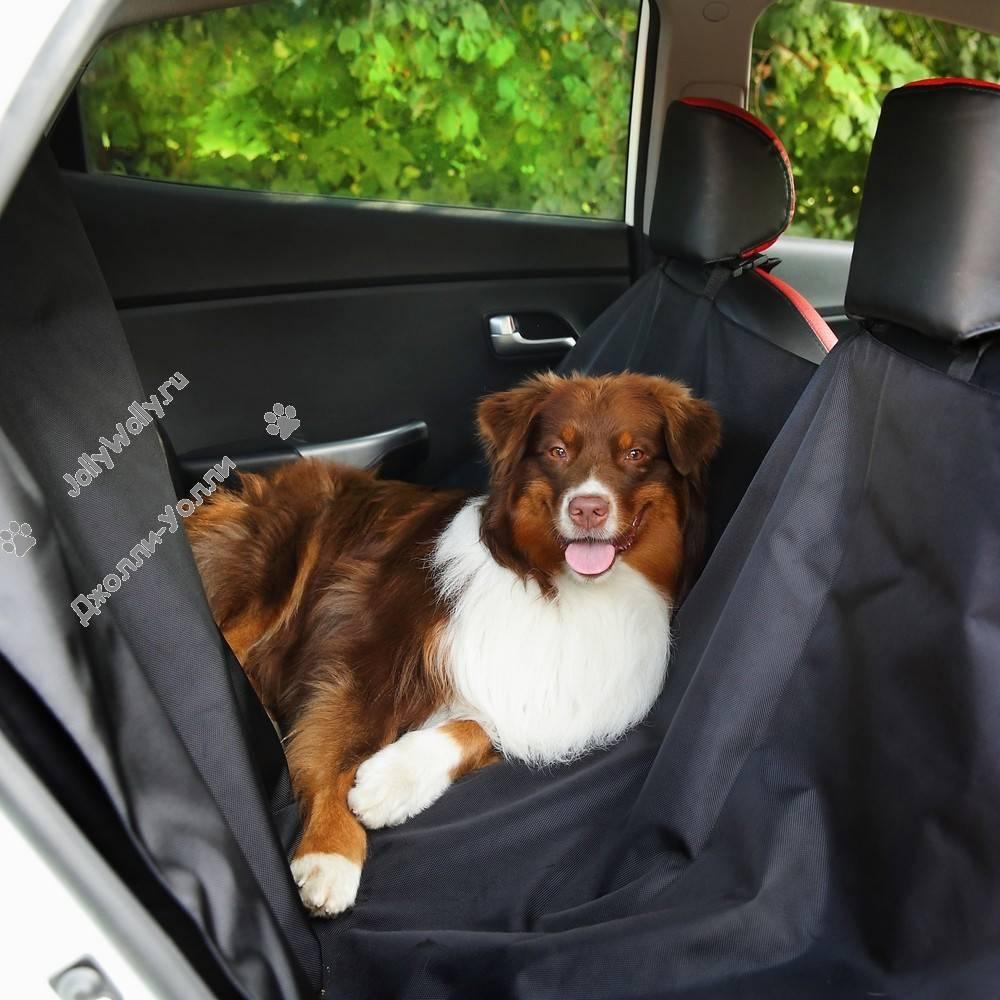 Бизнес-идея: пошив автогамаков для перевозки собак