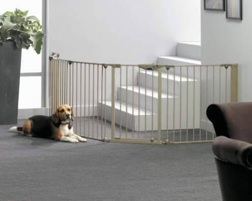 Вольер для собаки в квартире — как создать безопасное место для домашнего питомца