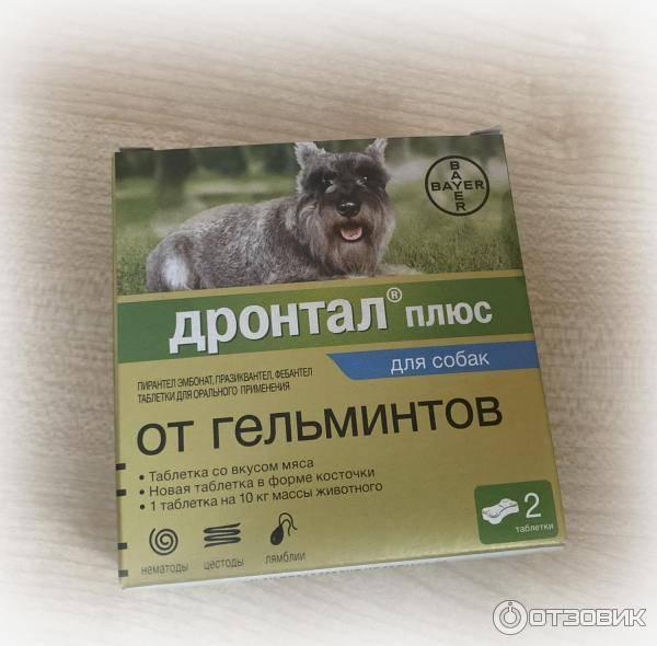 Дронтал для кошек инструкция по применению и дозировка.