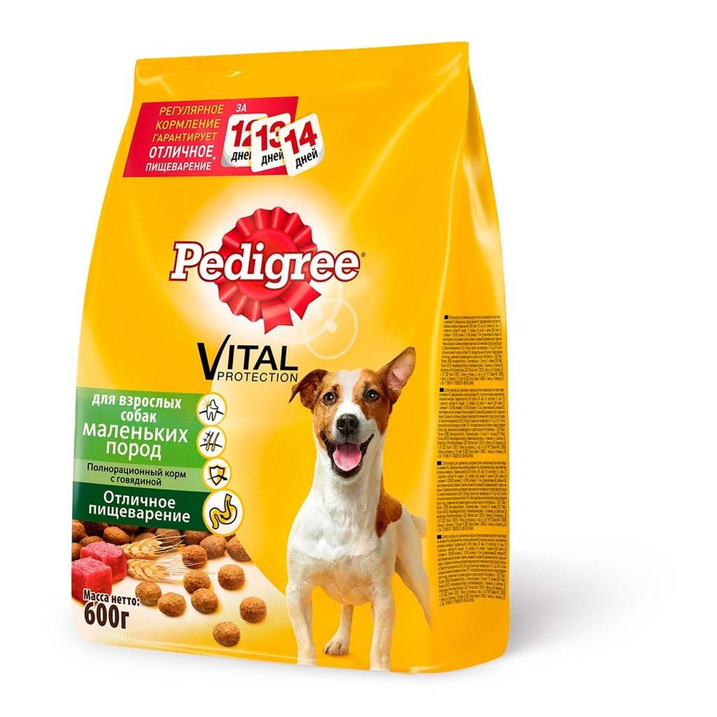 Корм now (нау) для собак | состав, цена, отзывы