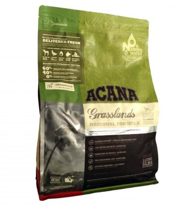Рейтинг сухих кормов холистик класса для собак: now fresh, acana и другие