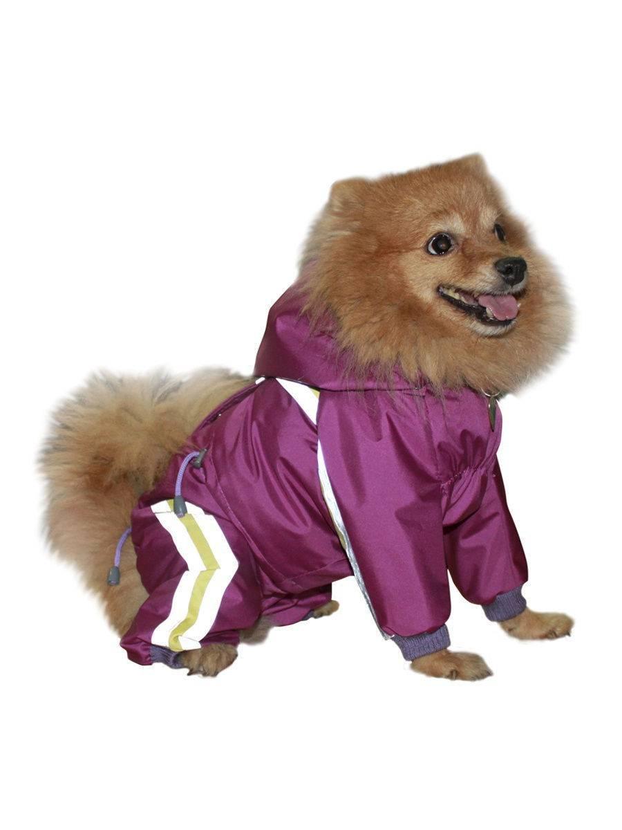 Комбез для собачки. - гардероб для наших любимых питомцев (собак, кошек) - страна мам
