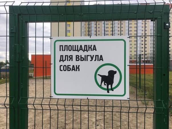 Закон о выгуле собак в россии 2020: основные положения, комментарии юриста