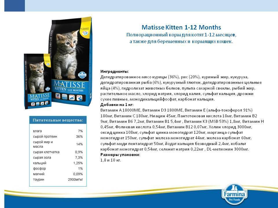 Корм для кошек матисс (matisse): отзывы ветеринаров, цена, состав