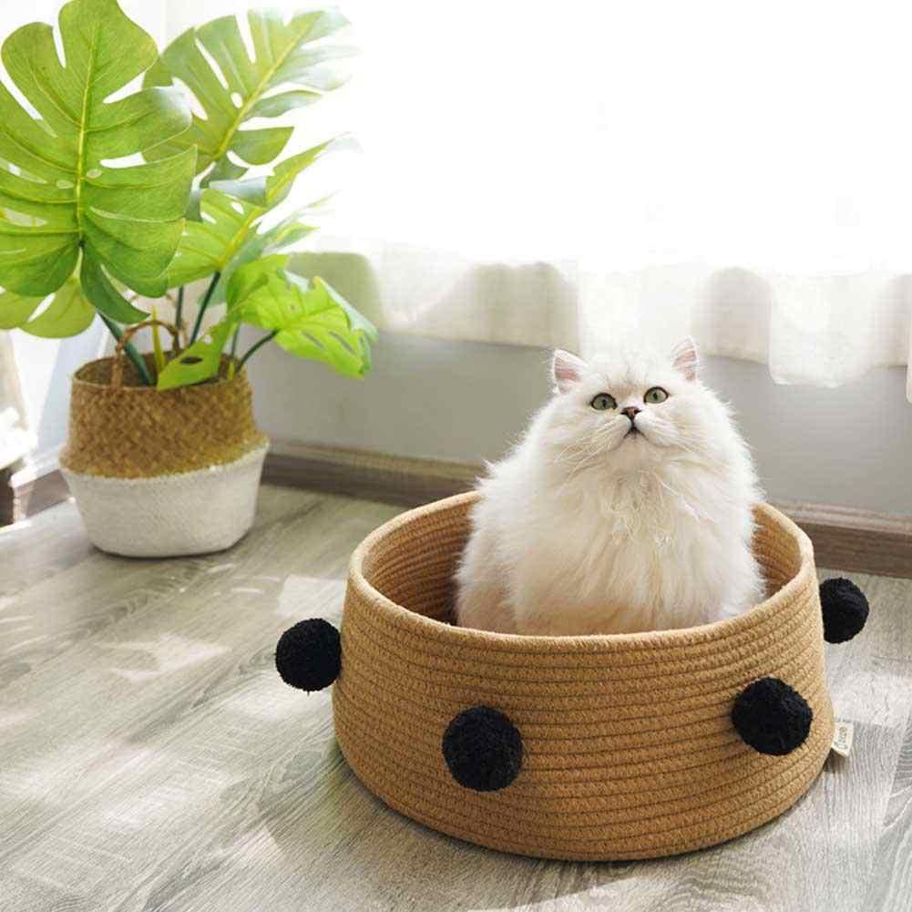 Игрушки для кошек и котов своими руками: как сделать в домашних условиях, какие приспособления предпочесть для котёнка и взрослого животного