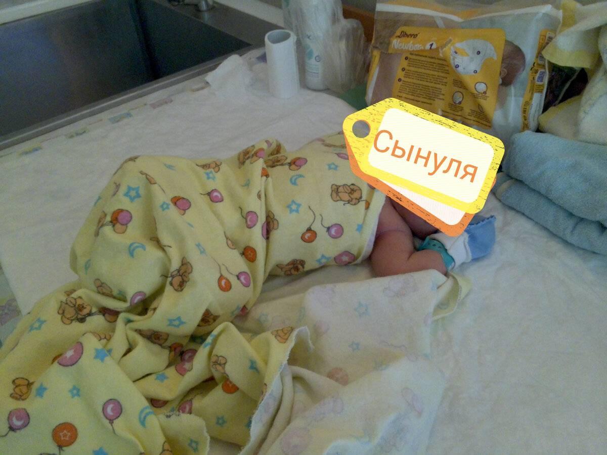 Эклампсия у собаки после родов: причины, симптомы и первая помощь