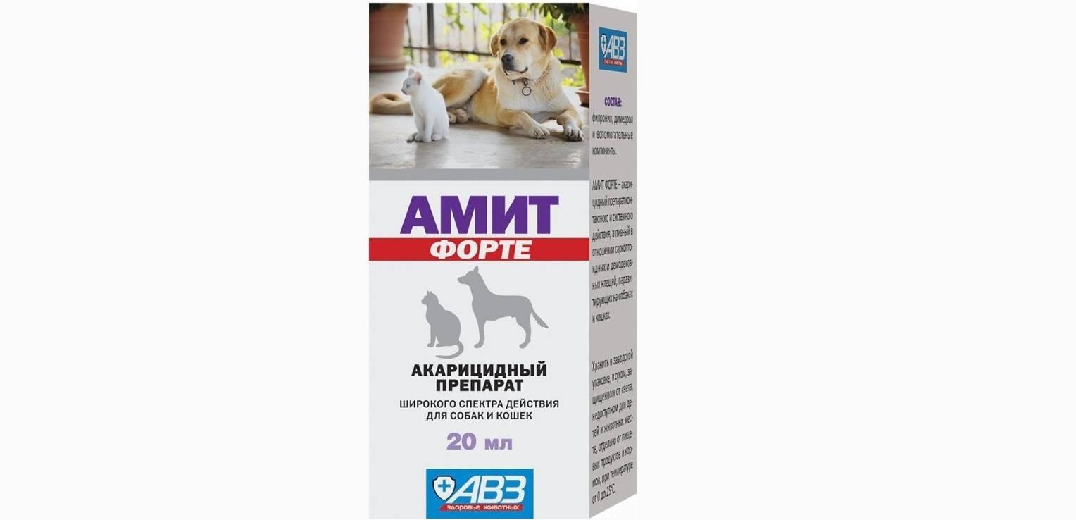 Амитразин для собак: инструкция по применению