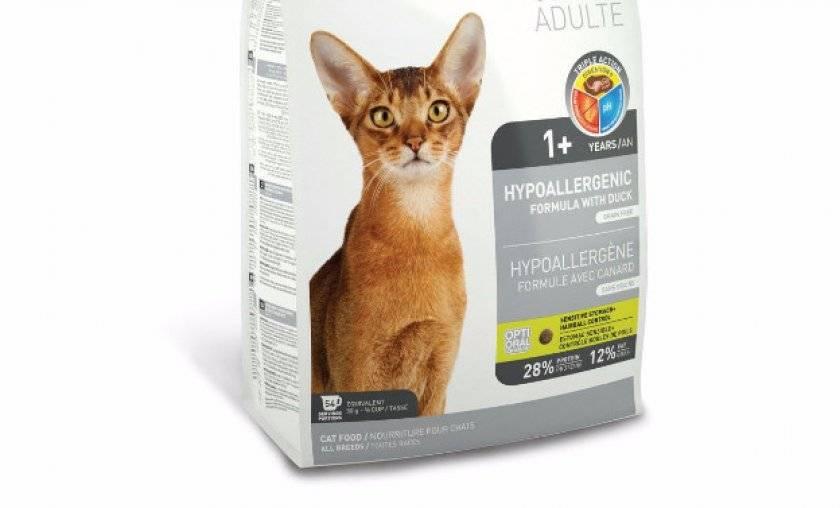 Гипоаллергенные корма для кошек: отзывы, какие лучше, рейтинг гипоаллергенные корма для кошек: отзывы, какие лучше, рейтинг
