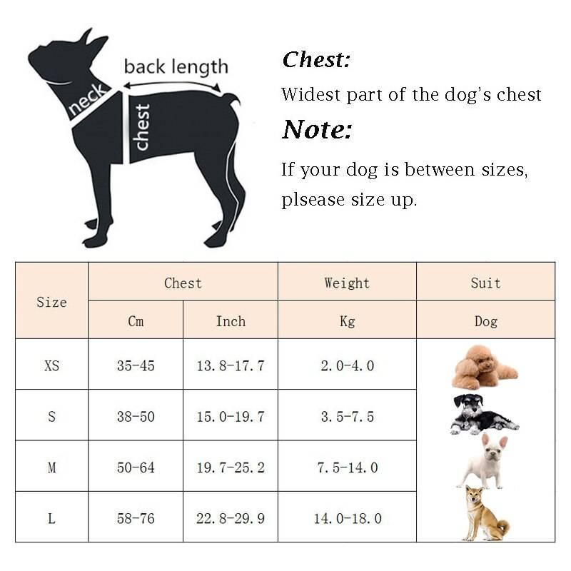 Как выбрать поводок для собаки: предназначение и виды поводков