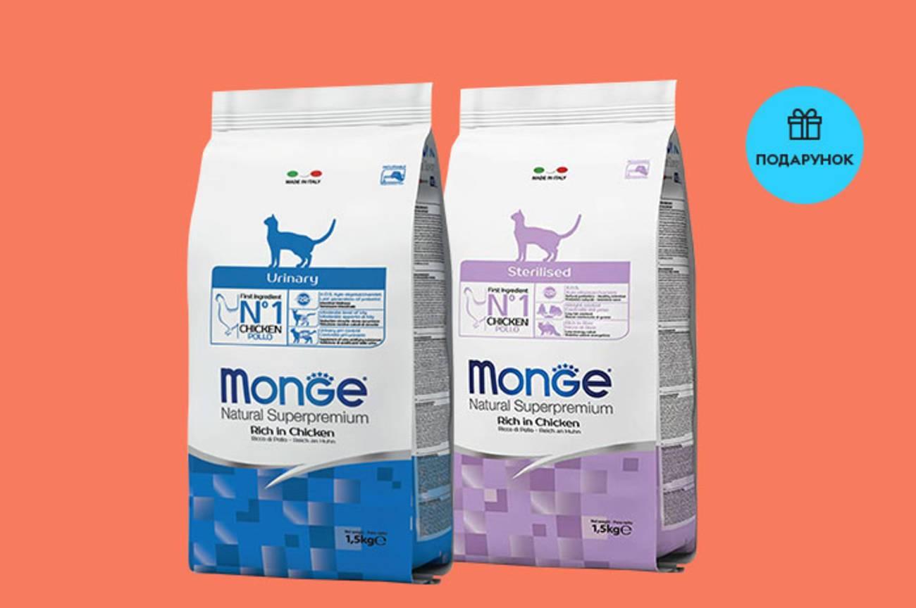 Корм для кошек monge: обзор итальянского производителя и состав рационов