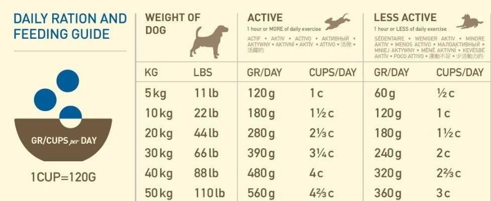 Корма для собак acana heritage, формула acana heritage: состав корма для собак и щенков, отзывы об акана херитейдж