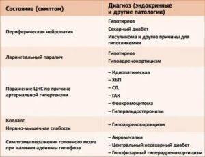 Синдром киари (краниоцервикальная мальформация) у собак | ветеринарная клиника бэст в новосибирске