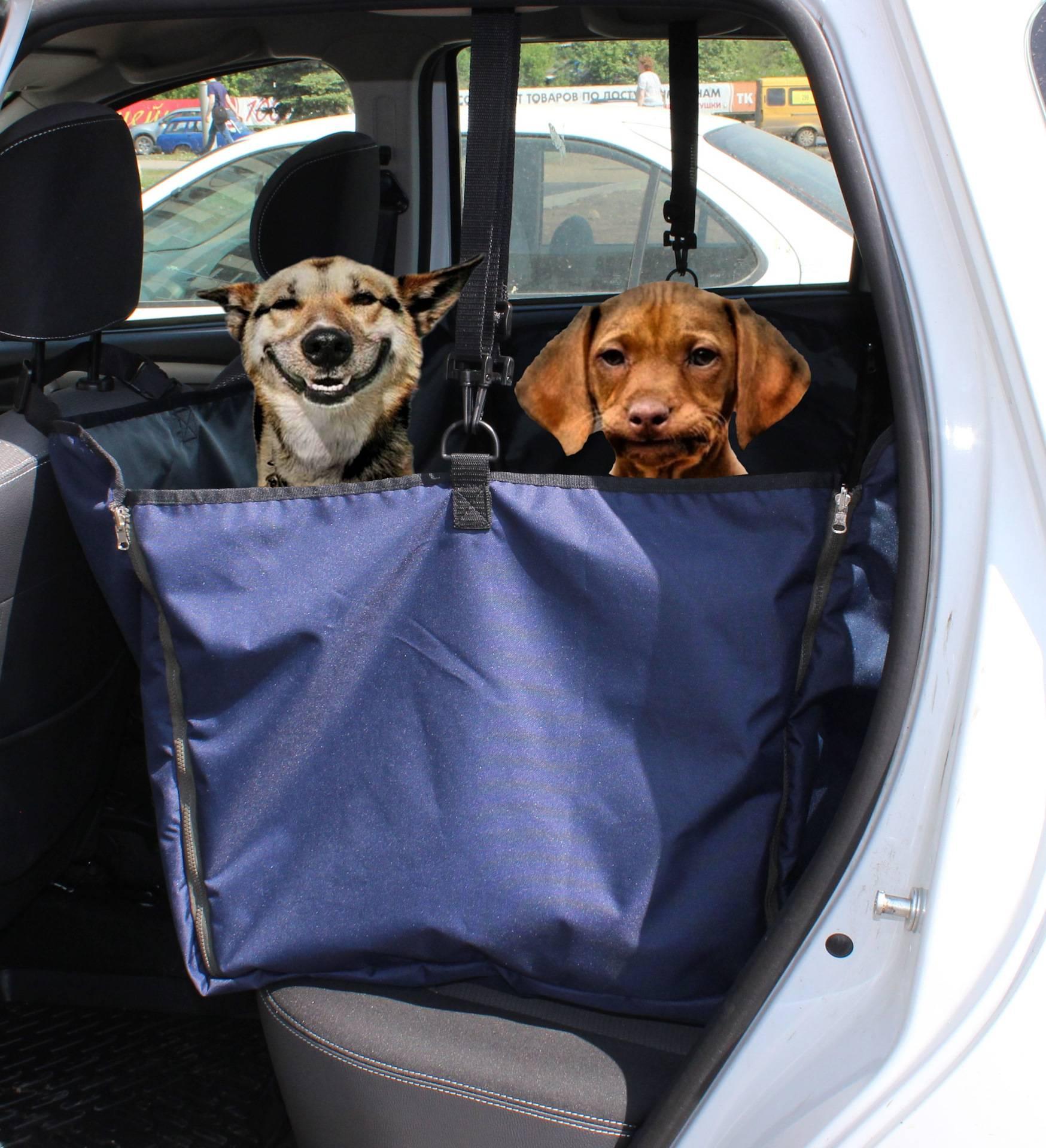 Для чего нужен автогамак для собаки: применение для перевозки и обзор - котопес