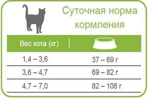 Питание кошек сухим кормом: правила, рекомендации владельцам