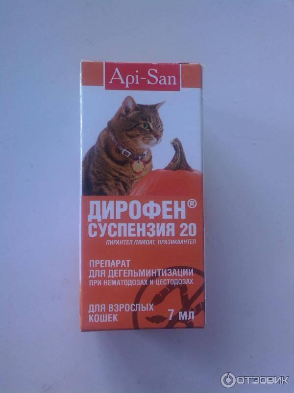 Дирофен-суспензия 60 для взрослых собак и кошек 10мл - купить, цена и аналоги, инструкция по применению, отзывы в интернет ветаптеке добропесик